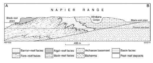 —Cross section through the Napier Range reef complex at Windjana Gorge, as interpreted by Playford and Johnstone (1959).
