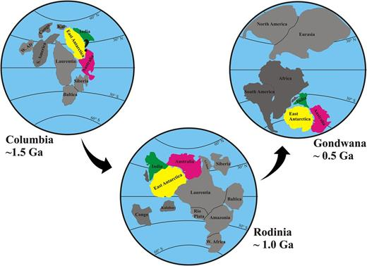 Map showing the proposed position of India and Antarctica in archetypal models of Columbia (c. 1.5 Ga), Rodinia (c. 1.0 Ga) and Gondwana (c. 0.5 Ga) supercontinent assembly. Redrawn from Meert (2002); Meert and Torsvik (2003) and Harley et al. (2013b) respectively.