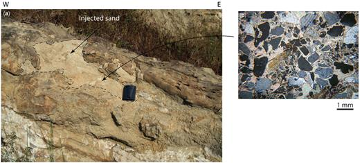 (a) Outcrop evidence of overpressure along the Sagaing Fault: sandstones injected into a bedded Miocene sandstone. NW suburbs of Naypyidaw. Location: 19.474959° N, 96. 077197° E. (b) Thin-section of sandstone with cataclastic texture with clay matrix, indicating overpressure.