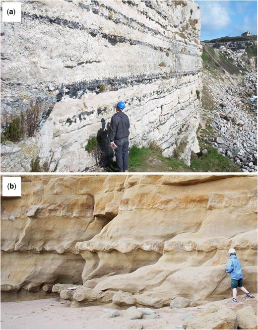 Effects of eodiagenesis: nodules, nodular beds and concretions. (a) Upper Jurassic Portland Limestone with chert beds, Wessex Basin, UK (Maliva et al. 1999). (b) Lower Jurassic Bridport Sandstone, Wessex Basin, UK, with bioclast-derived calcite cemented nodules and nodular layers, Wessex Basin, UK (Bryant et al. 1988). (Images (a) and (b) courtesy of Richard Worden.)