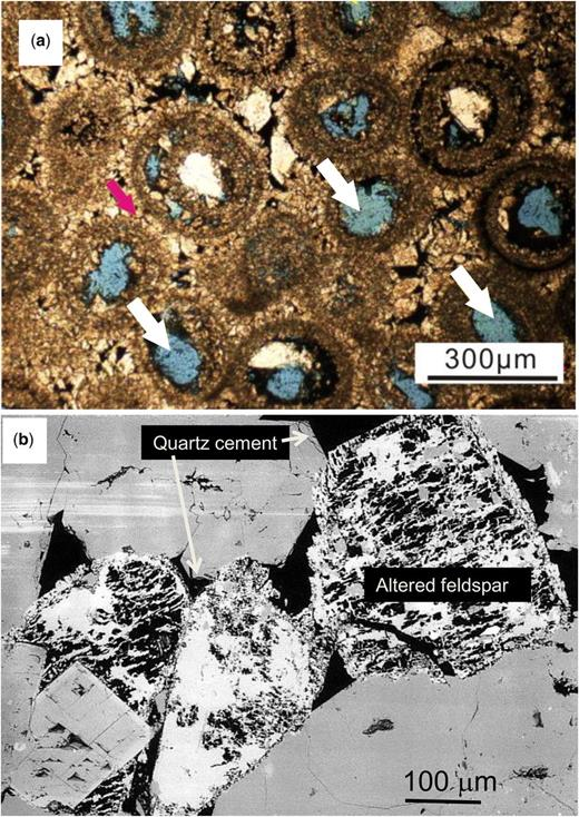 Secondary porosity in sandstones and carbonates. (a) Lower Triassic Fiexianguan Formation, Sichuan Basin, China (Jiang et al. 2014). Secondary pores within ooids comprise a substantial fraction of the effective porosity. (b) Upper Triassic Chaunoy Formation, Paris Basin, France (Worden et al. 1999). Secondary porosity after feldspar dissolution led to ineffective porosity and clay mineral growth. (Image (a) courtesy of Lei Jiang and image (b) courtesy of Richard Worden.)