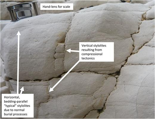 Upper Cretaceous Chalk outcrop from Selwicks Bay, Flamborough Head, UK (Starmer 1995). The Chalk developed bedding-parallel stylolites during normal burial (to c. 1000 m). The region underwent compressional tectonics with the main Flamborough Head Fault Zone, about 50 m from this site; compression resulted in a transient change in direction of the principal stress to horizontal and led to the development of vertical stylolites. The structures in this rock suggest that pressure (or more correctly, effective stress) plays a major part in the chemical compaction of rocks, thus apparently contradicting Bjørkum (1996) in which it was speculated that pressure plays a negligible role in chemical compaction. (Image courtesy of Richard Worden.)