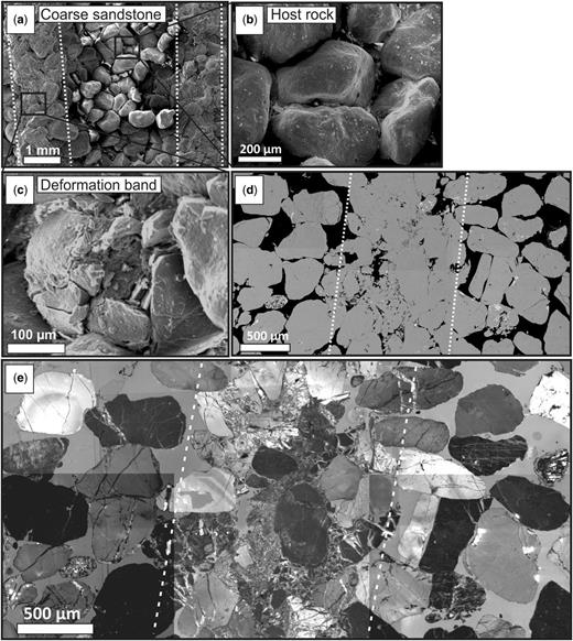 Deformation bands within the coarse-grained quartzarenite (bandwidth is inferred by the dashed white lines). (a)–(c) Secondary electron images illustrating the strain localization, poorly cemented host rock and intense cataclasis within the deformation band core. (d) BSE image of the deformation band and host rock. (e) Collated CL images revealing quartz cementation of the deformation band core and Hertzian fractures.